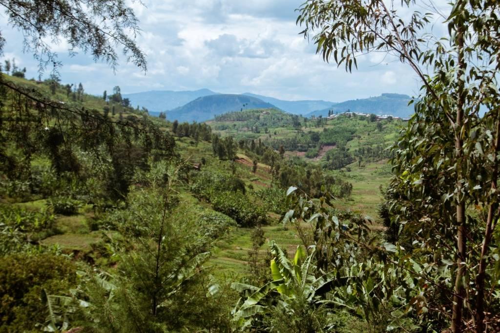 Rwanda Kayumbu