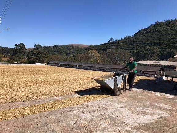Brazilie Fazenda Coqueiro