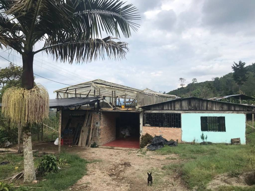 Kolumbie Huila - Asoguacharos