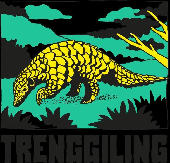 Indonesie Trenggiling