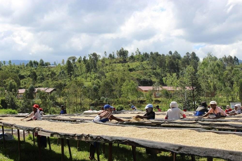 Rwanda Minazi Village
