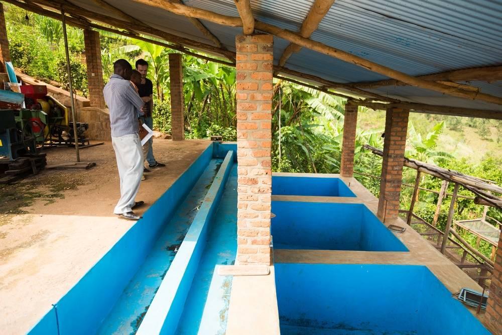 Rwanda Coko - Buhuri village: 500g